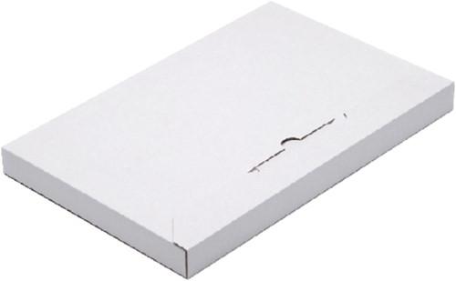 BRIEVENBUSBOX BUDGET A6 165X120X26MM WIT 1 Stuk