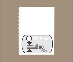 DRAADRUG GBC 9.5MM 34RINGS A4 WIT 100 STUK